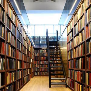 Библиотеки Стародуба